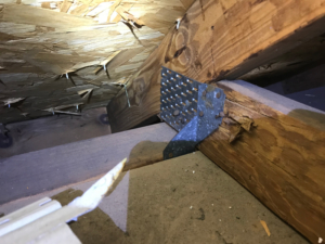 Wind Mitigation Inspection Cost Bold City Home Inspections